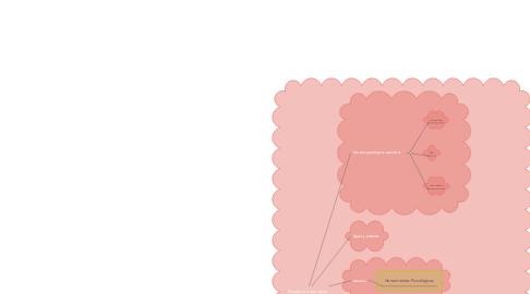 Mind Map: Mediación semiótica