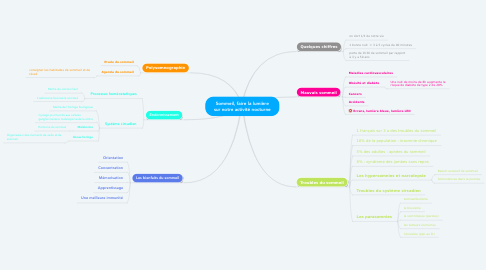 Mind Map: Sommeil, faire la lumière sur notre activité nocturne