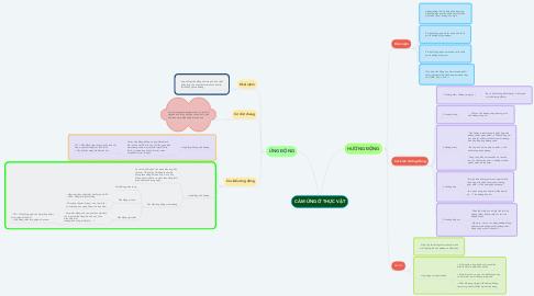 Mind Map: CẢM ỨNG Ở THỰC VẬT