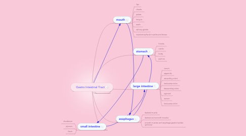 Mind Map: Gastro Intestinal Tract