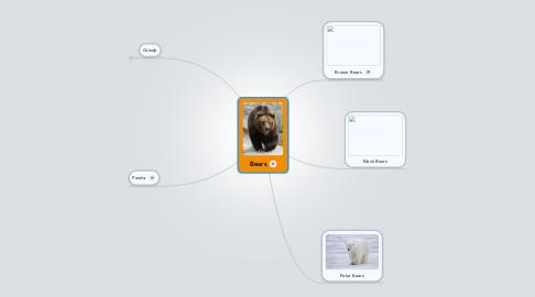 Mind Map: Bears