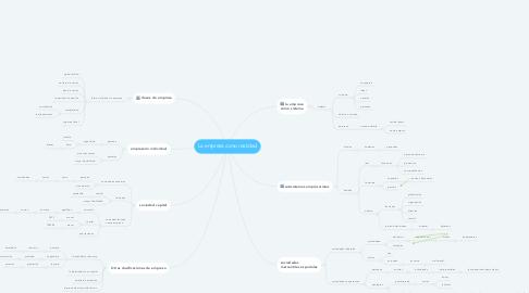 Mind Map: La empresa como realidad