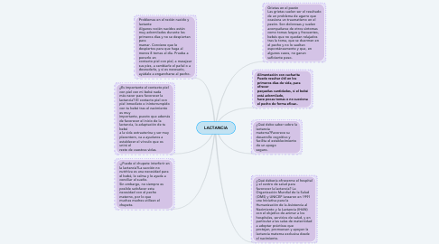 Mind Map: LACTANCIA