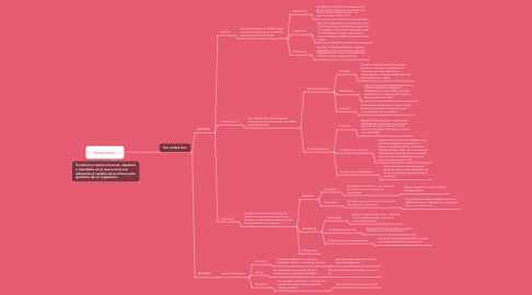 Mind Map: Mutaciones: