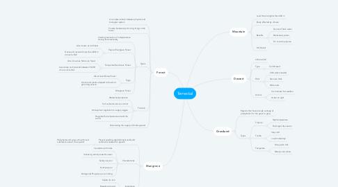 Mind Map: Terrestial