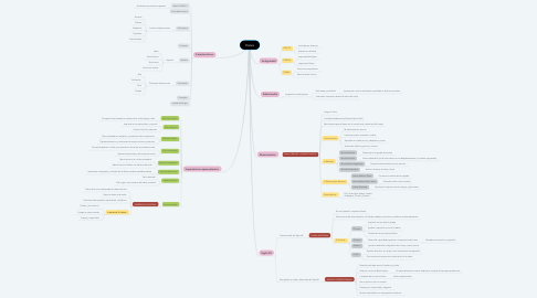 Mind Map: Danza