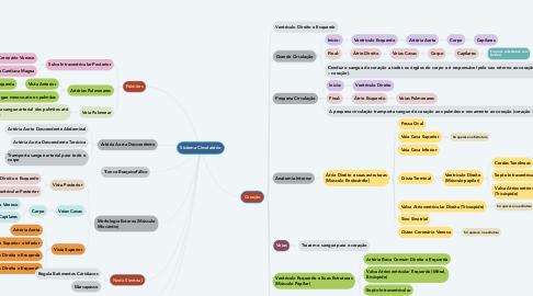 Mind Map: Sistema Circulatório