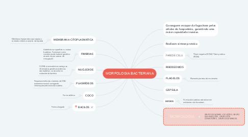 Mind Map: MORFOLOGIA BACTERIANA