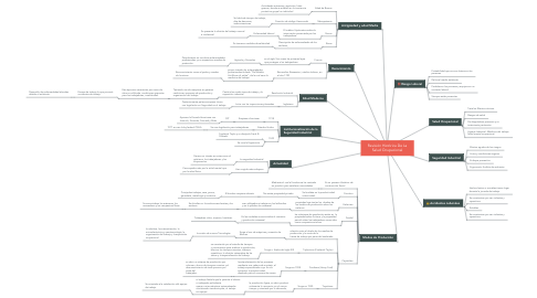 Mind Map: Revisión Histórica De La Salud Ocupacional