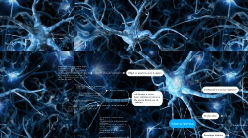 Mind Map: Sistema Nervoso