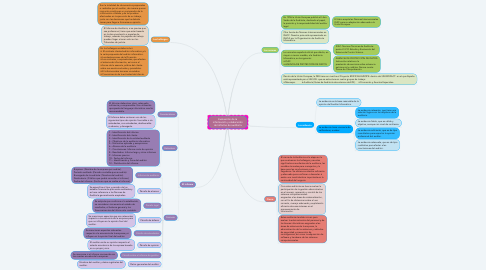 Mind Map: Evaluación de la información y elaboración del informe de auditoría