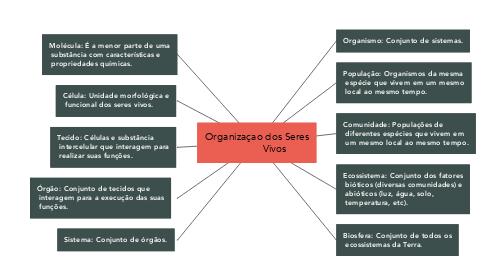 Mind Map: Organizaçao dos Seres              Vivos