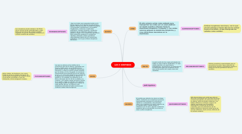 Mind Map: LOS 5 SENTIDOS