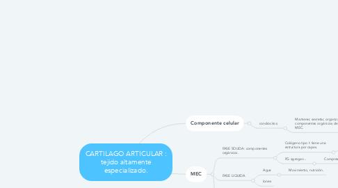 Mind Map: CARTILAGO ARTICULAR : tejido altamente especializado.