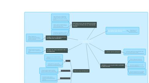 Mind Map: LEY 1314 DE 2009 Y MARCO CONCEPTUAL