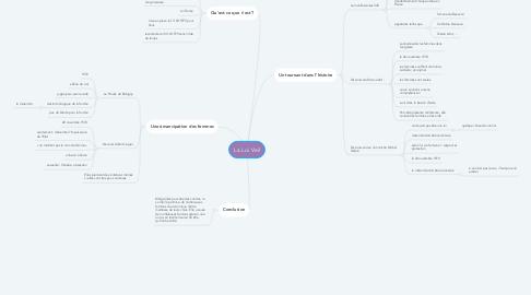 Mind Map: La Loi Veil