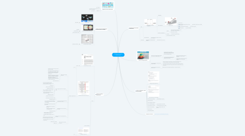 Mind Map: PROBLEM DISCOVERY INTERVIEWS