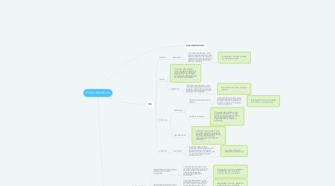 Mind Map: POSSUI MATRÍCULA