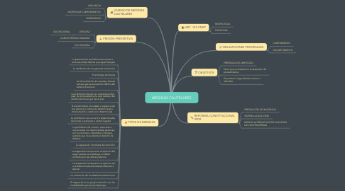 Mind Map: MEDIDAS CAUTELARES