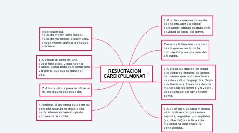 Mind Map: RESUCITACION CARDIOPULMONAR