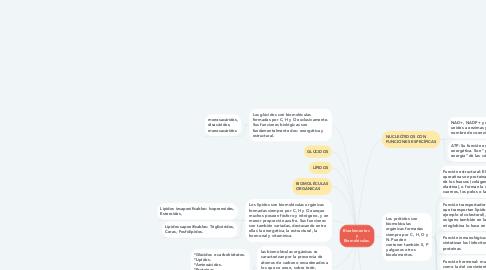 Mind Map: Bioelementos  y Biomoléculas.