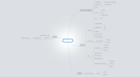 Mind Map: The Back