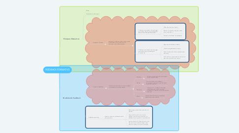 Mind Map: FEEDBACK FORMATIVO