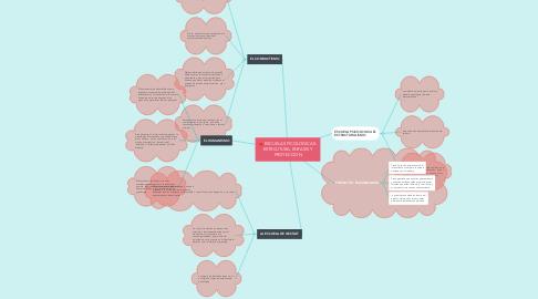 Mind Map: ESCUELAS PICOLOGICAS: ESTRCUTURA, ENFASIS Y PROYECCION