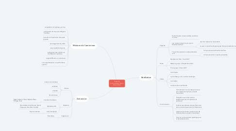 Mind Map: Projet de communication-Solann Dream Team