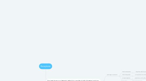 Mind Map: Receptores