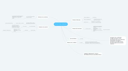 Mind Map: CICLO VITAL HUMANO