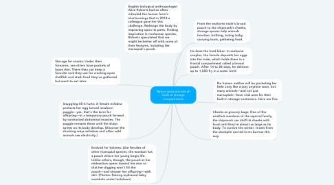 Mind Map: Nature gives animals all kinds of storage compartments