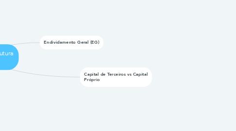 Mind Map: Indicadores de Estrutura Capital