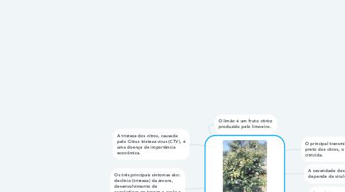 Mind Map: CVT- Cítrus tristeza vírus