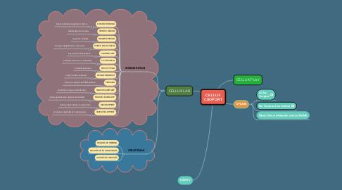 Mind Map: CELLUX CSOPORT