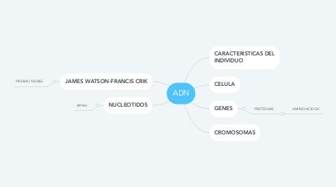 Mind Map: ADN