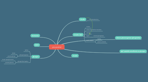 Mind Map: pós pandrial