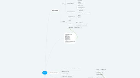 Mind Map: TICCY