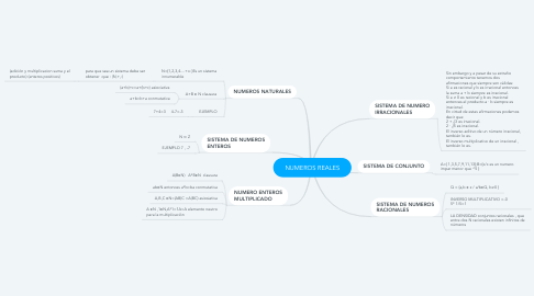 Mind Map: NUMEROS REALES