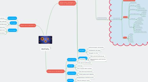 Mind Map: Células-tronco