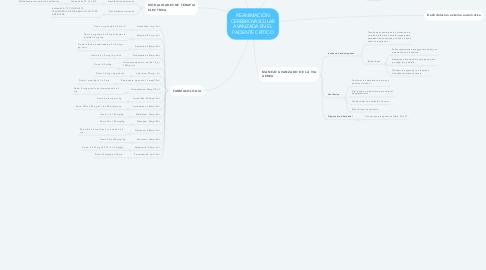 Mind Map: REANIMACIÒN CEREBROVASCULAR AVANZADA EN EL PACIENTE CRITICO