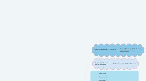 Mind Map: Inclusione