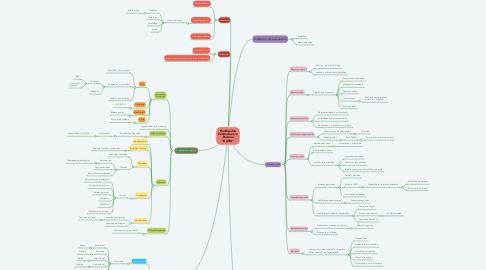 """Mind Map: Planificación Centrada en la Persona """"DAVID"""""""