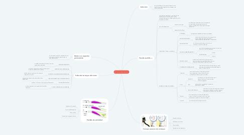 Mind Map: MOTORES MONOFÁSICOS