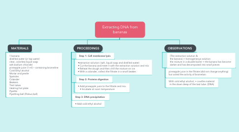 Mind Map: Extracting DNA from bananas