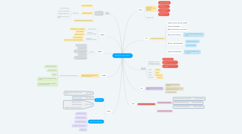 Mind Map: Normativa del Auditor