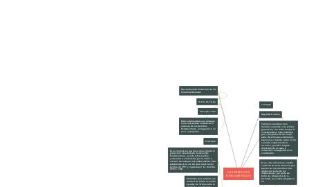 Mind Map: LOS DERECHOS FUNDAMENTALES