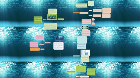 Mind Map: Oceans and fisheries