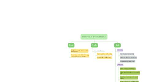 Mind Map: Branches of Brachial Plexus