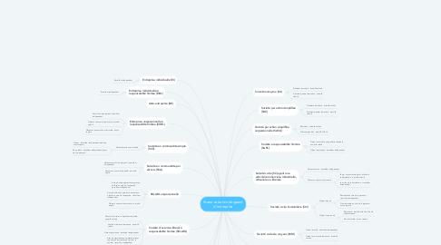 Mind Map: Statut social du dirigeant d'entreprise